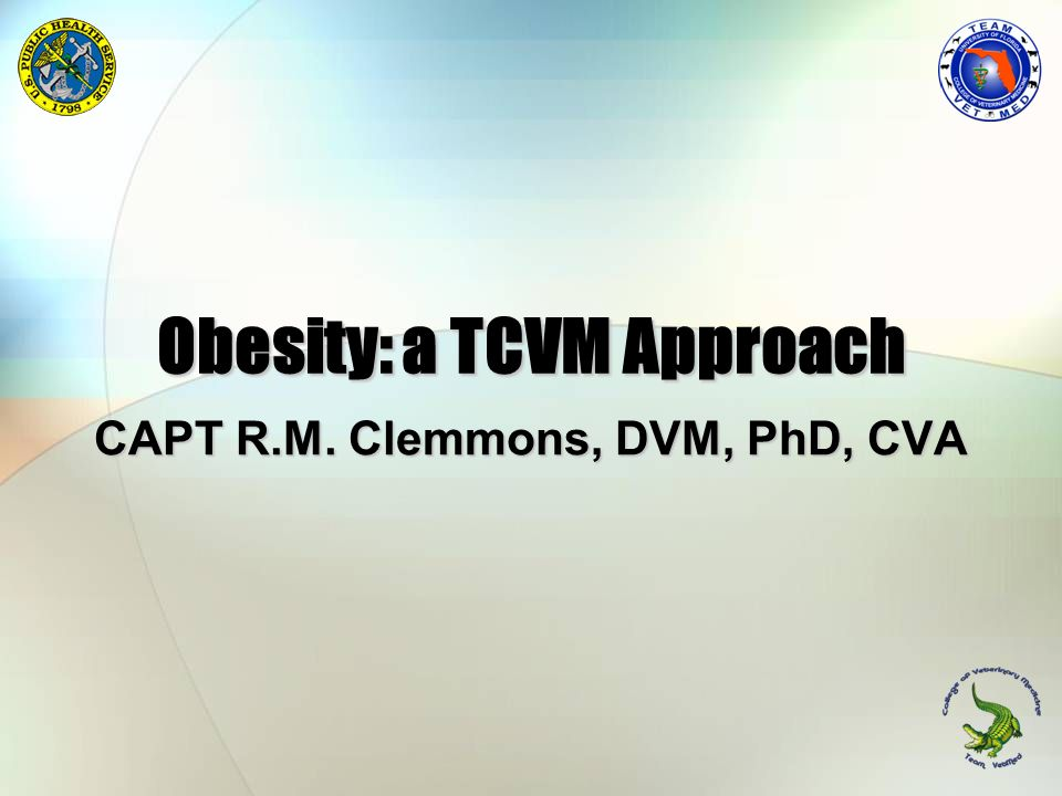 Obesity: a TCVM Approach