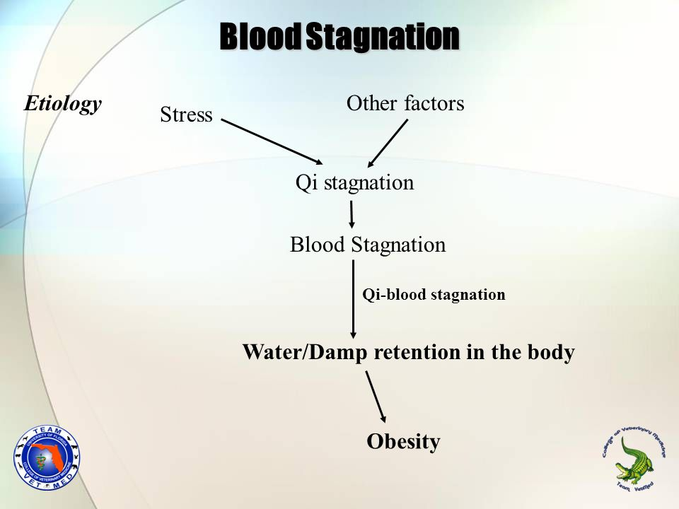 Blood Stagnation Etiology Other factors Stress Qi stagnation