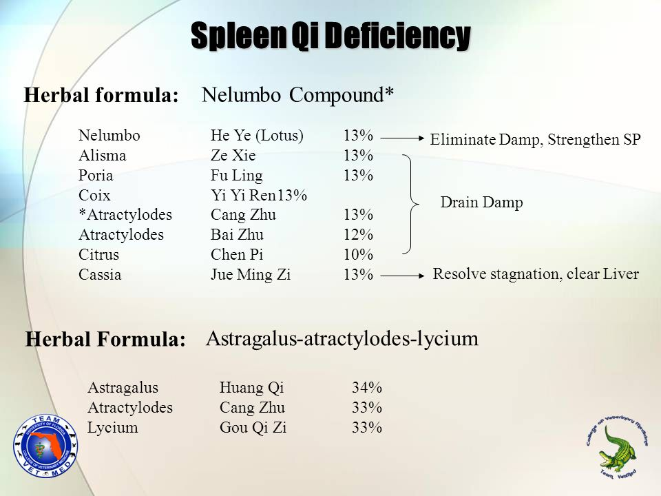 Spleen Qi Deficiency Herbal formula: Nelumbo Compound* Herbal Formula: