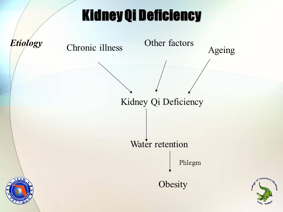 Kidney Qi Deficiency Etiology Other factors Chronic illness Ageing