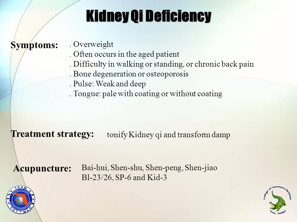 Kidney Qi Deficiency Symptoms: Treatment strategy: Acupuncture: