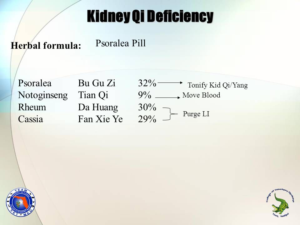 Kidney Qi Deficiency Psoralea Pill Herbal formula:
