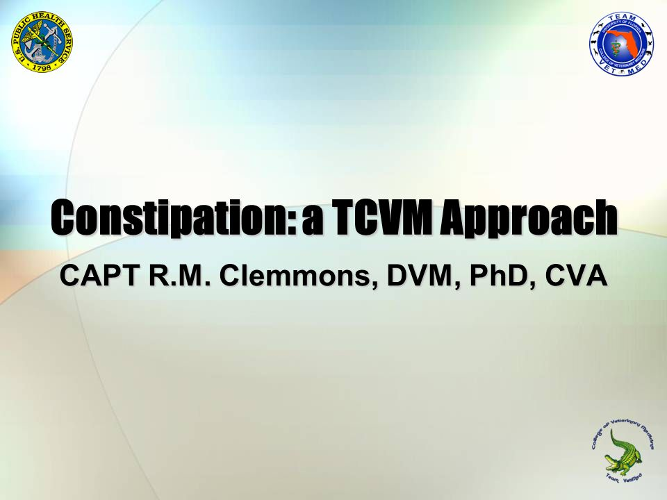 Constipation: a TCVM Approach