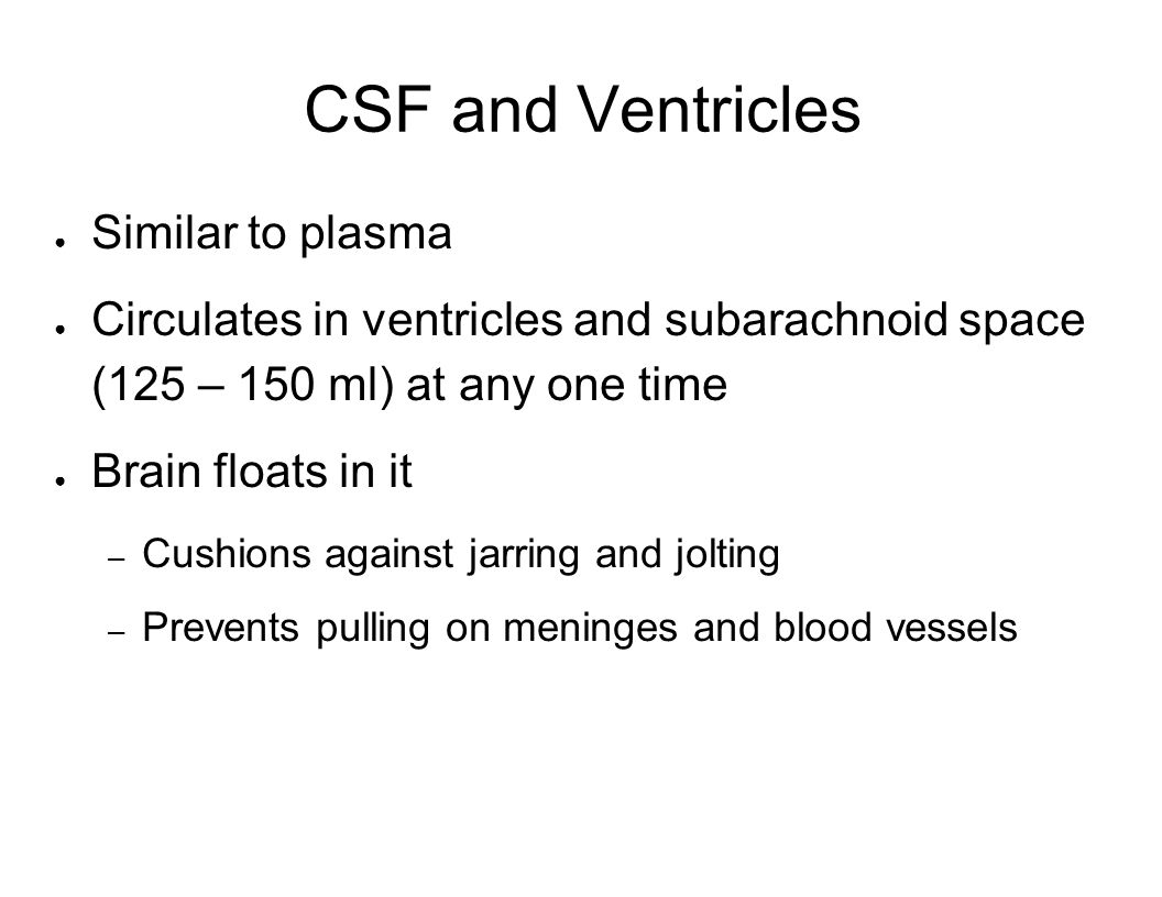 CSF and Ventricles Similar to plasma