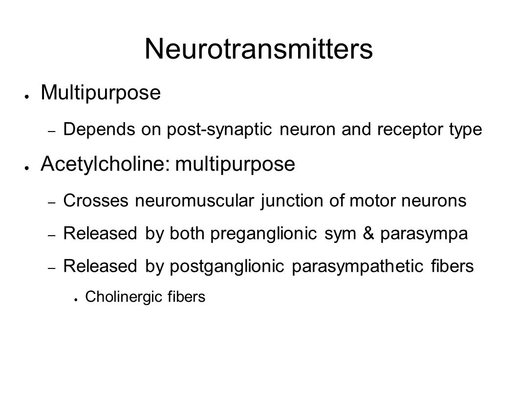 Neurotransmitters Multipurpose Acetylcholine: multipurpose