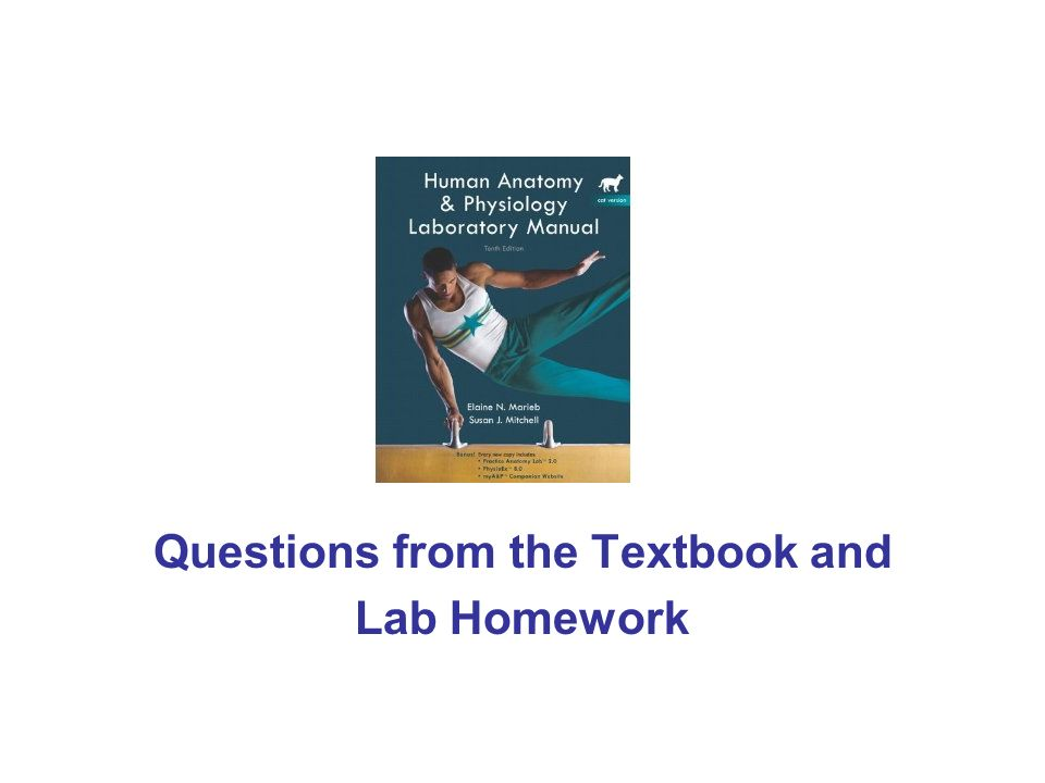 Questions from the Textbook and