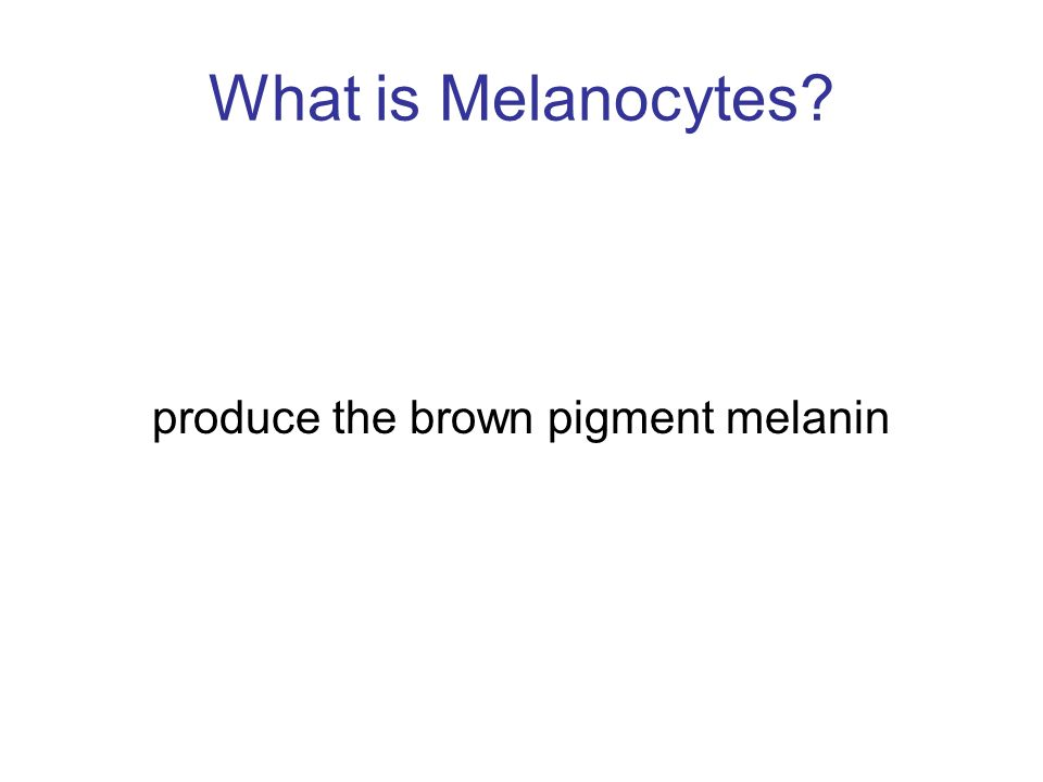 produce the brown pigment melanin