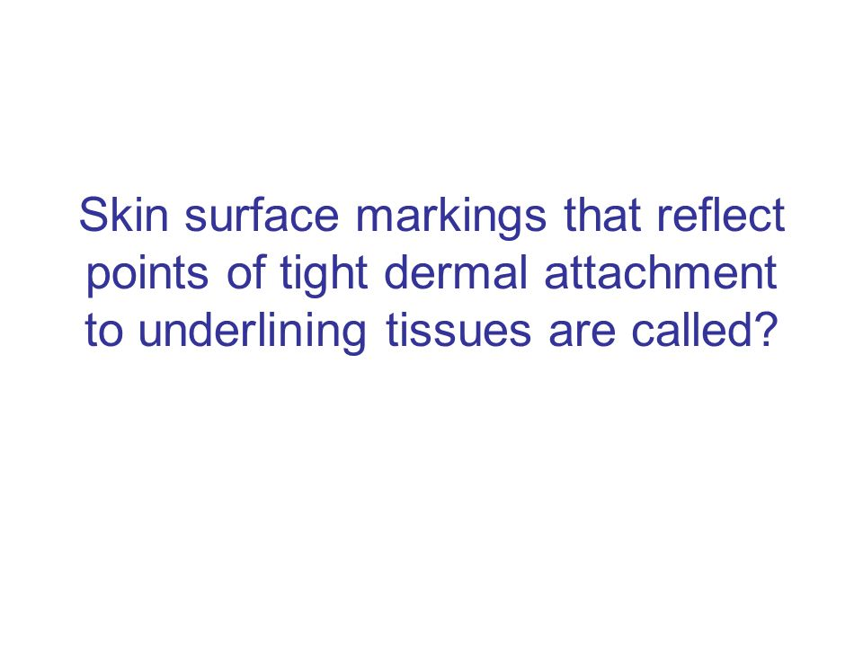 Skin surface markings that reflect points of tight dermal attachment to underlining tissues are called