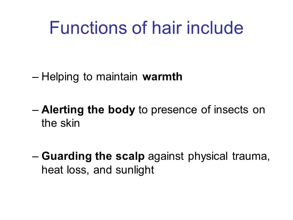 Functions of hair include