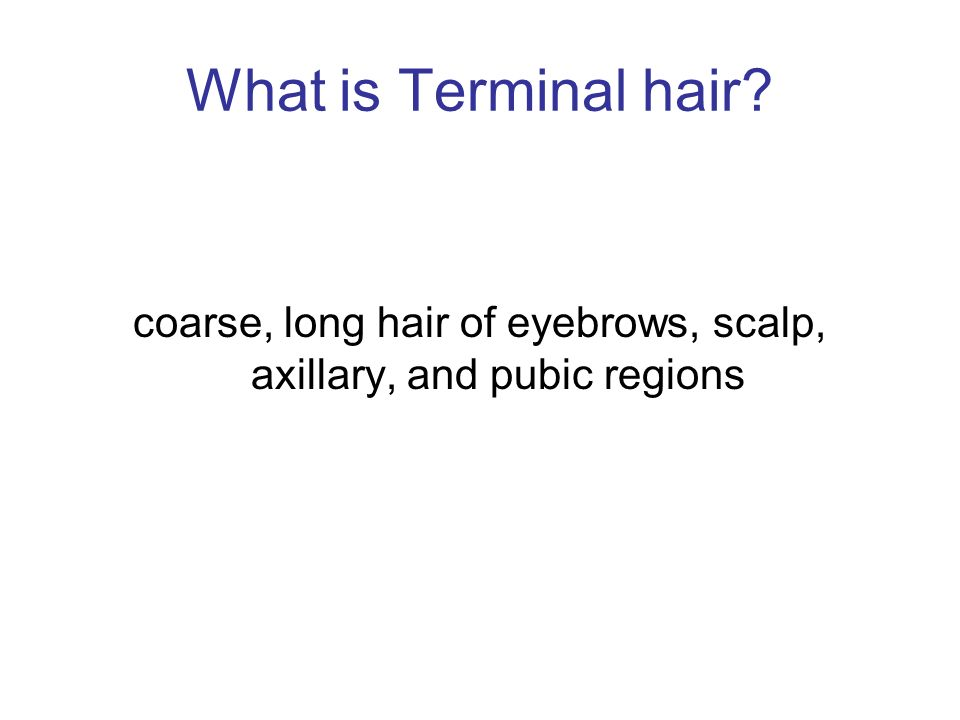 coarse, long hair of eyebrows, scalp, axillary, and pubic regions