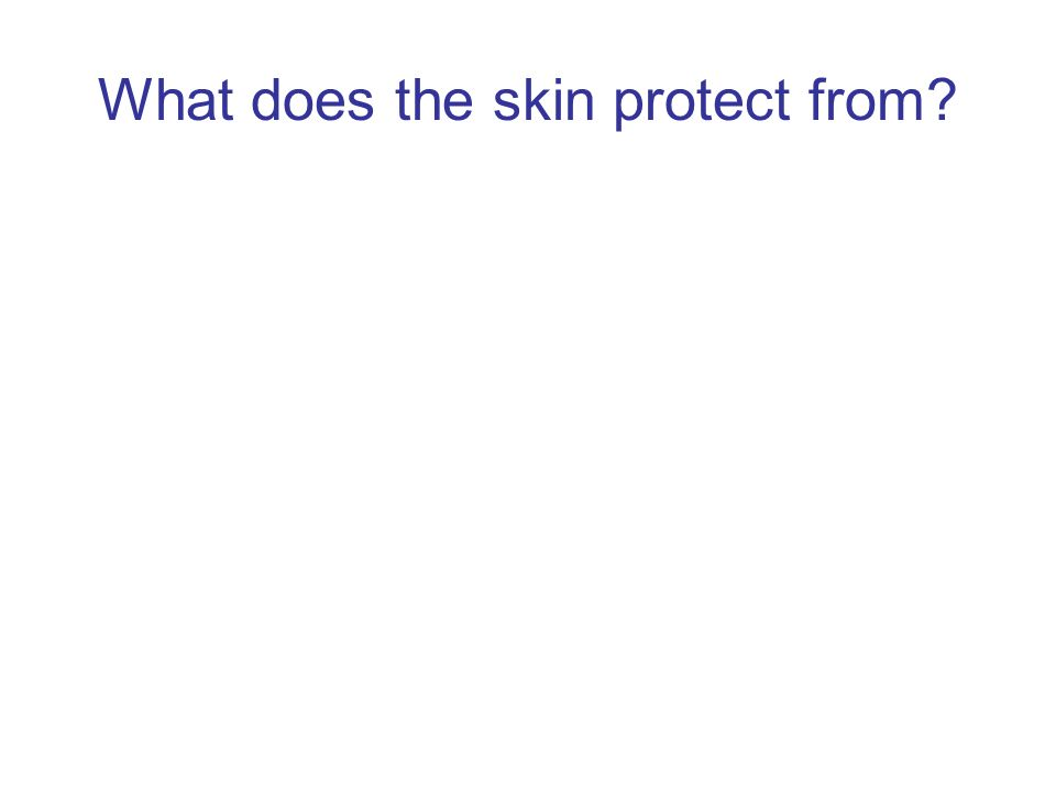 What does the skin protect from