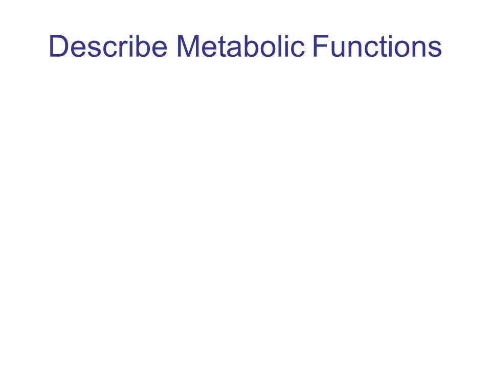 Describe Metabolic Functions