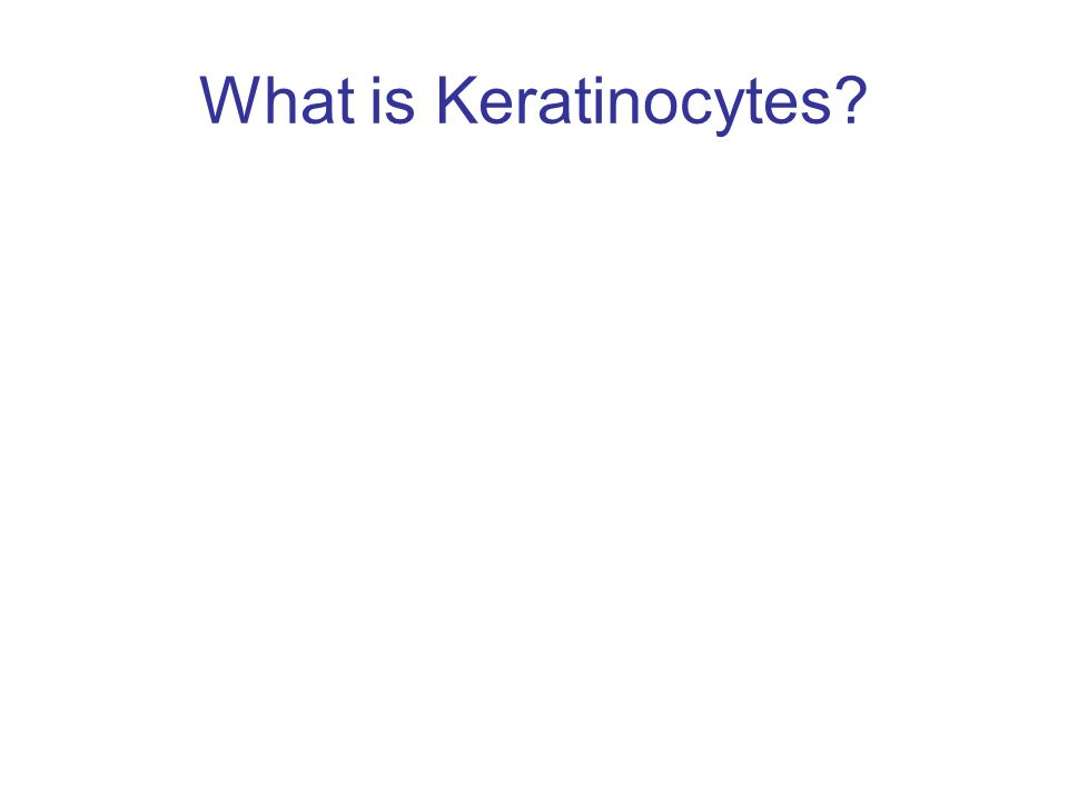 What is Keratinocytes