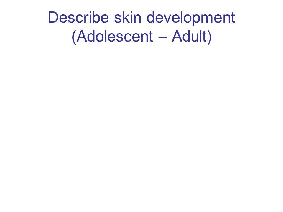 Describe skin development (Adolescent – Adult)
