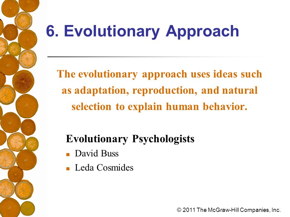 6. Evolutionary Approach