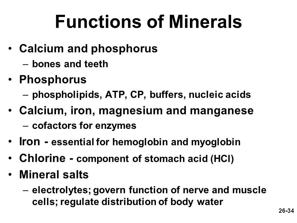 Functions of Minerals Calcium and phosphorus Phosphorus