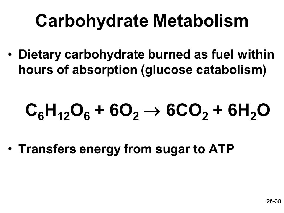 carbohydrate metabolism Definition of carbohydrate metabolism in the definitionsnet dictionary meaning of carbohydrate metabolism what does carbohydrate metabolism mean information and translations of carbohydrate metabolism in the most comprehensive dictionary definitions resource on the web.
