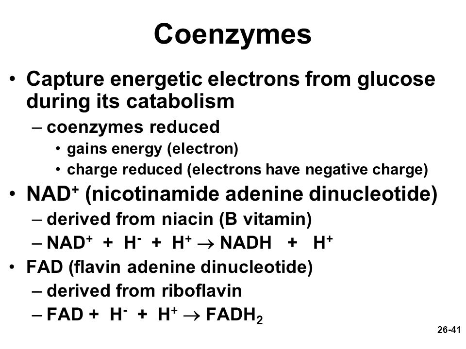 Coenzymes Capture energetic electrons from glucose during its catabolism. coenzymes reduced. gains energy (electron)