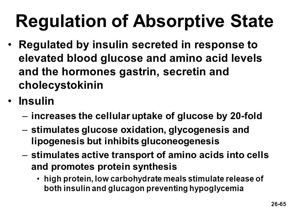 Regulation of Absorptive State