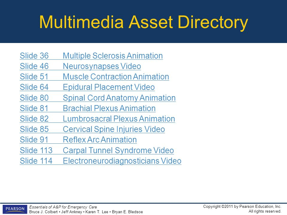 Multimedia Asset Directory