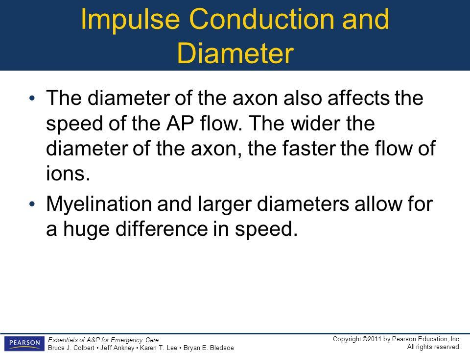 Impulse Conduction and Diameter