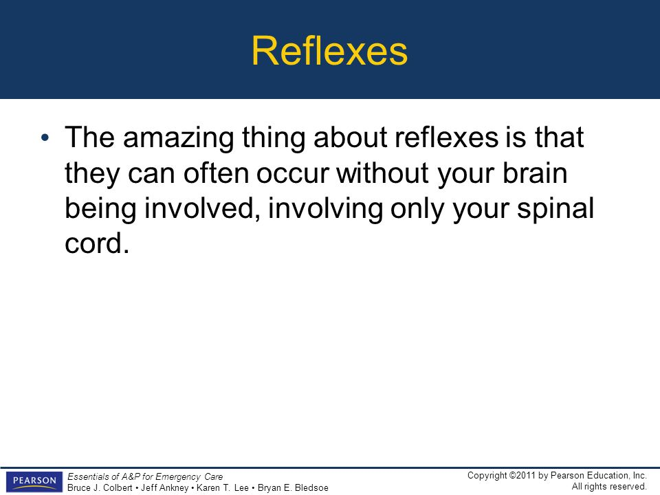 Reflexes The amazing thing about reflexes is that they can often occur without your brain being involved, involving only your spinal cord.