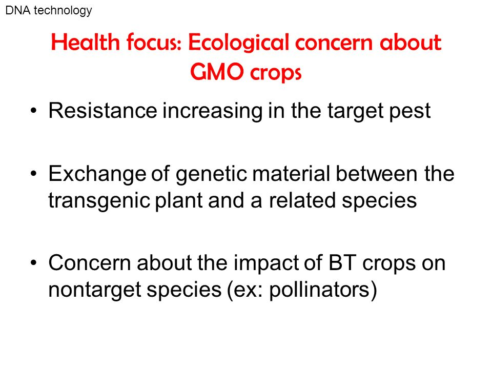 Health focus: Ecological concern about GMO crops