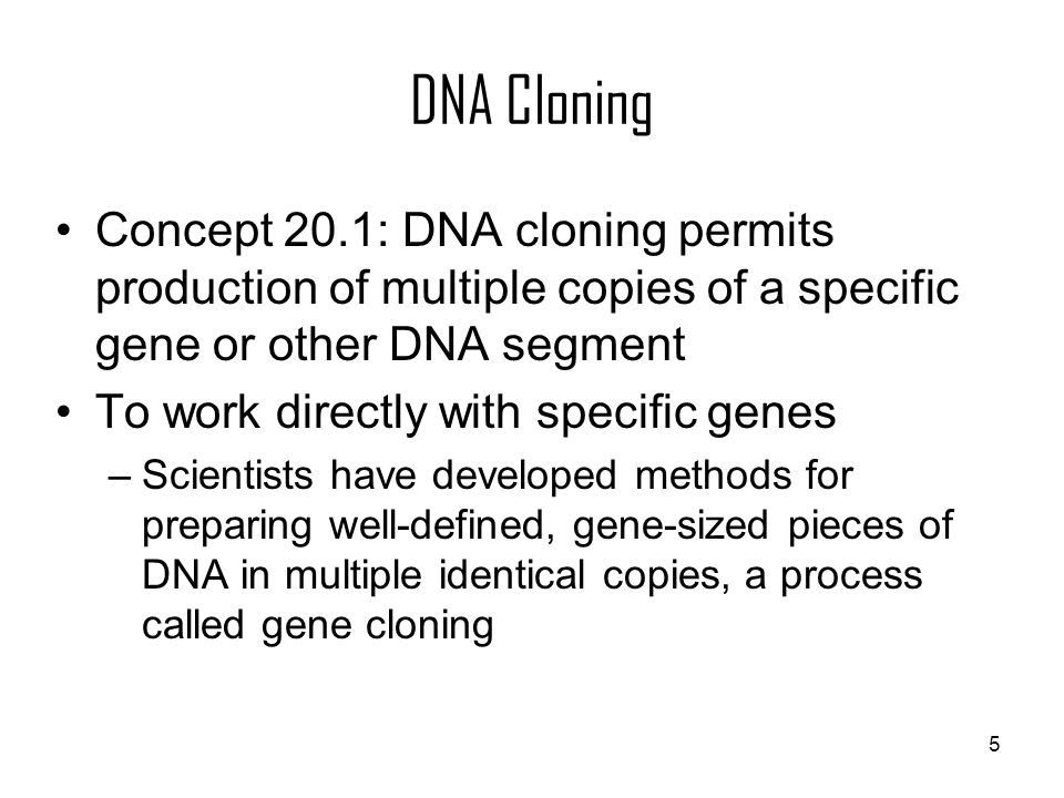 DNA Cloning Concept 20.1: DNA cloning permits production of multiple copies of a specific gene or other DNA segment.