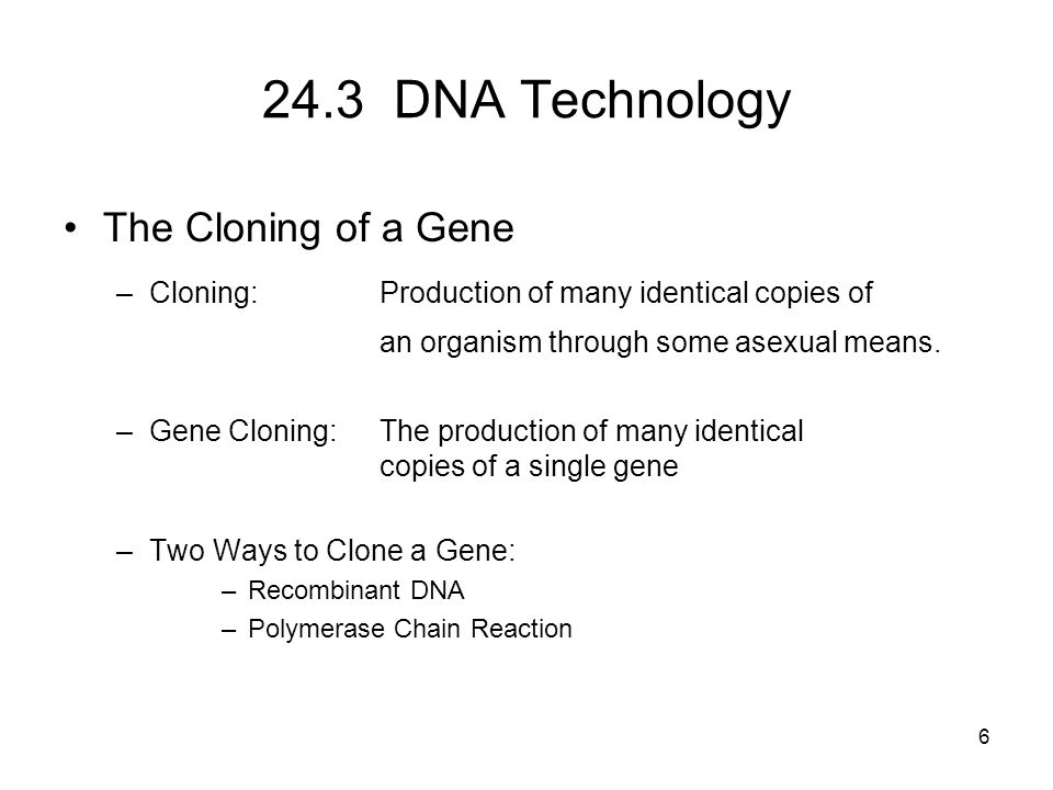 24.3 DNA Technology The Cloning of a Gene