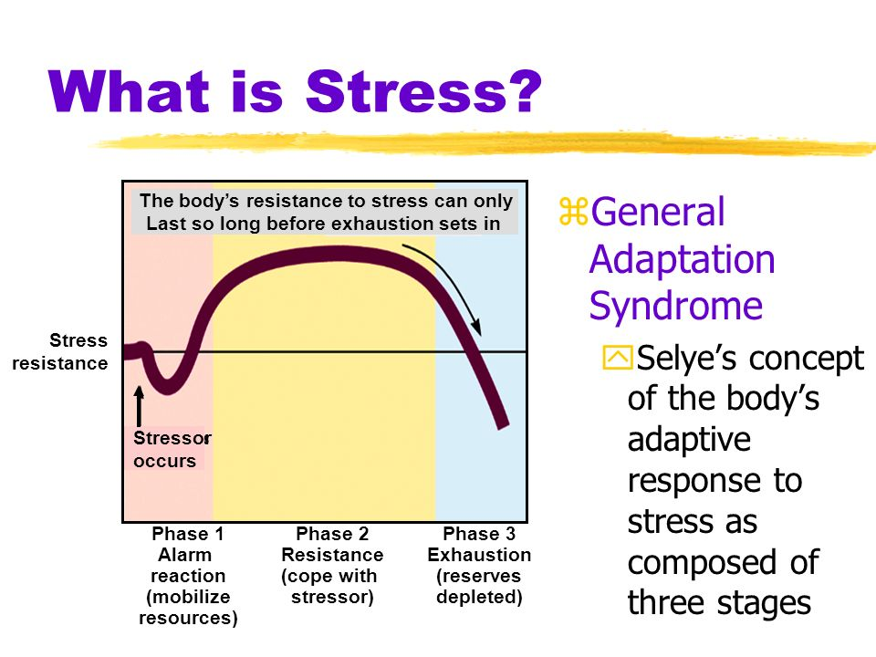 What is Stress General Adaptation Syndrome