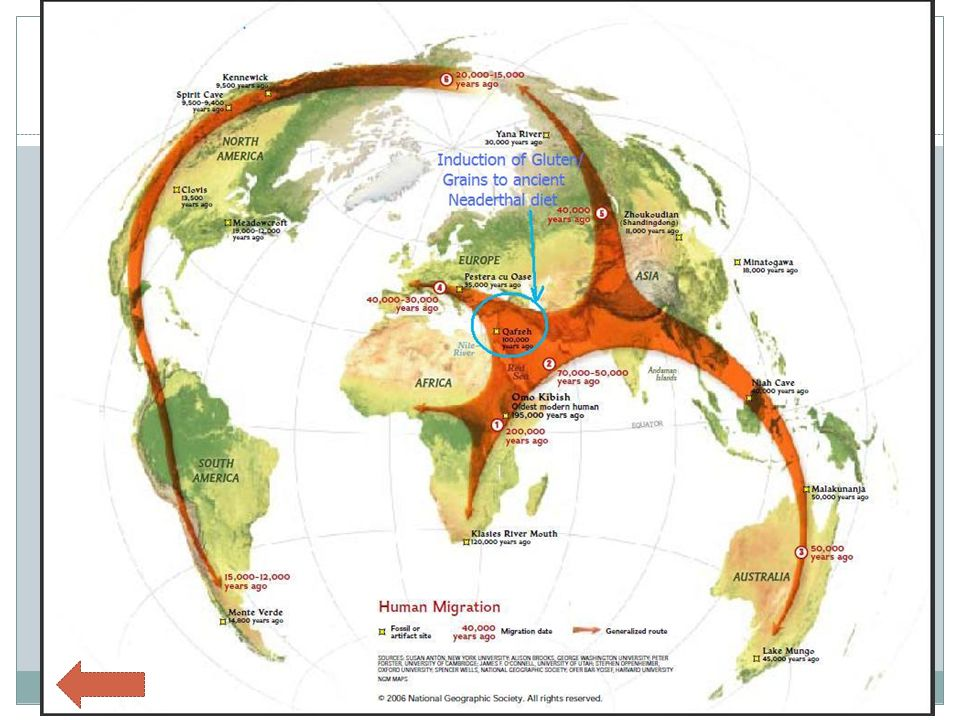 Paleolithic Migration Patterns