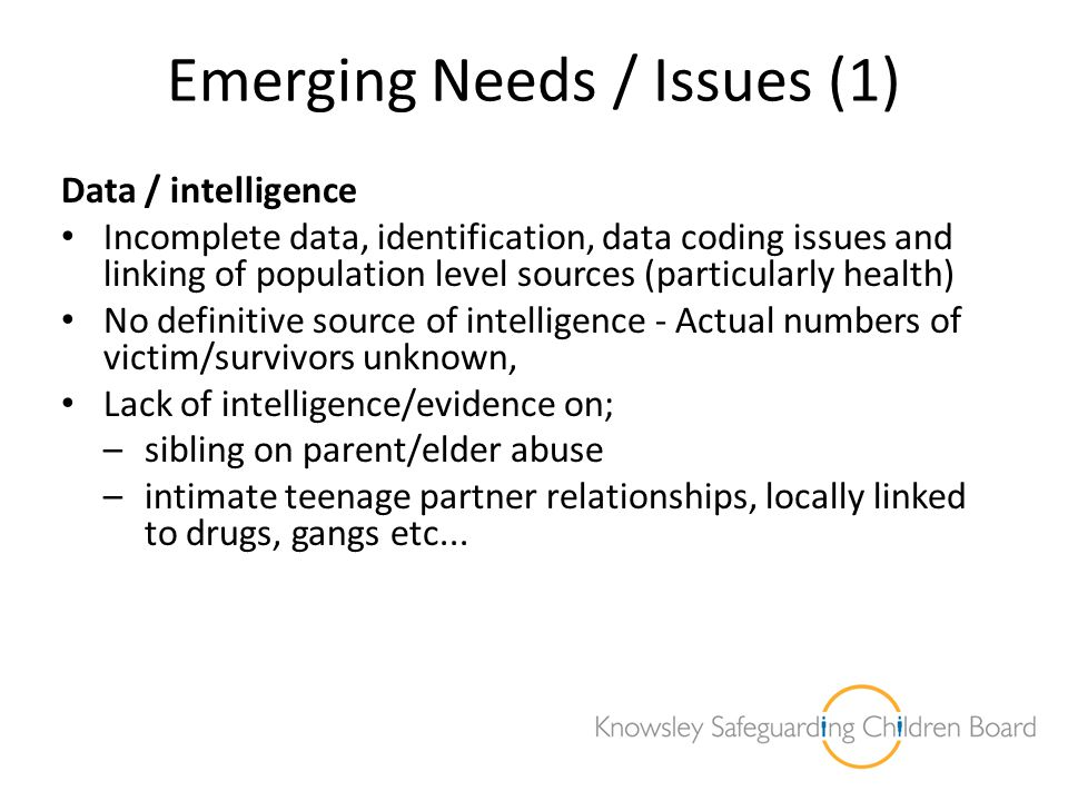 Emerging Needs / Issues (1)