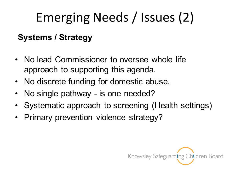 Emerging Needs / Issues (2)