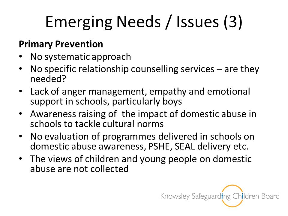 Emerging Needs / Issues (3)