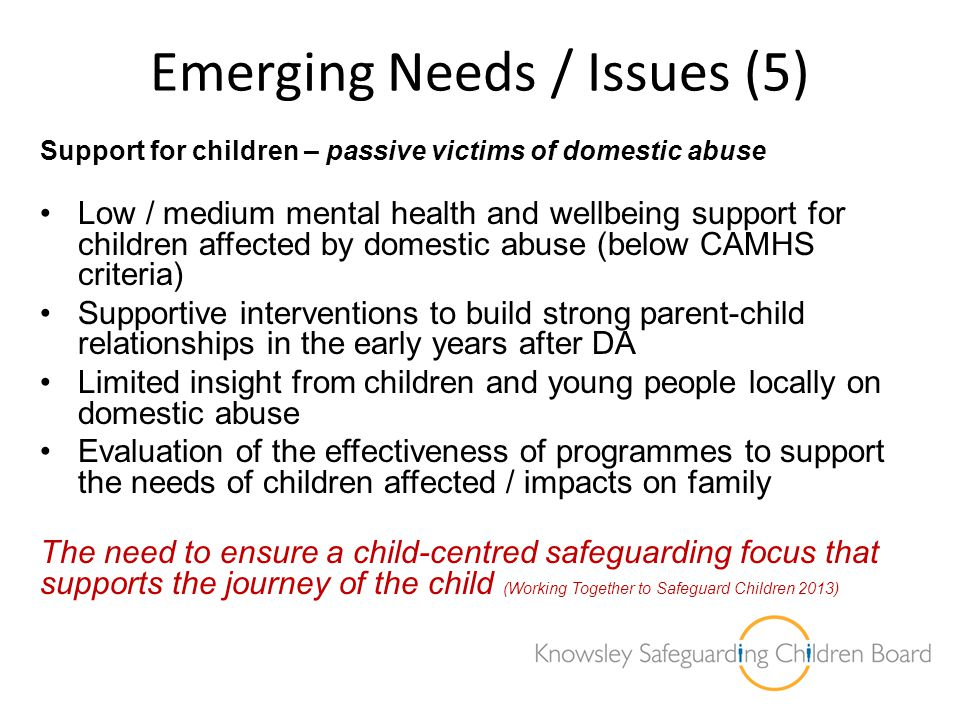 Emerging Needs / Issues (5)