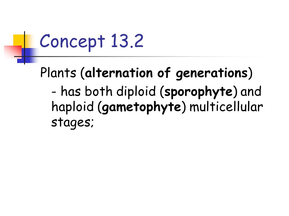 Concept 13.2 Plants (alternation of generations)