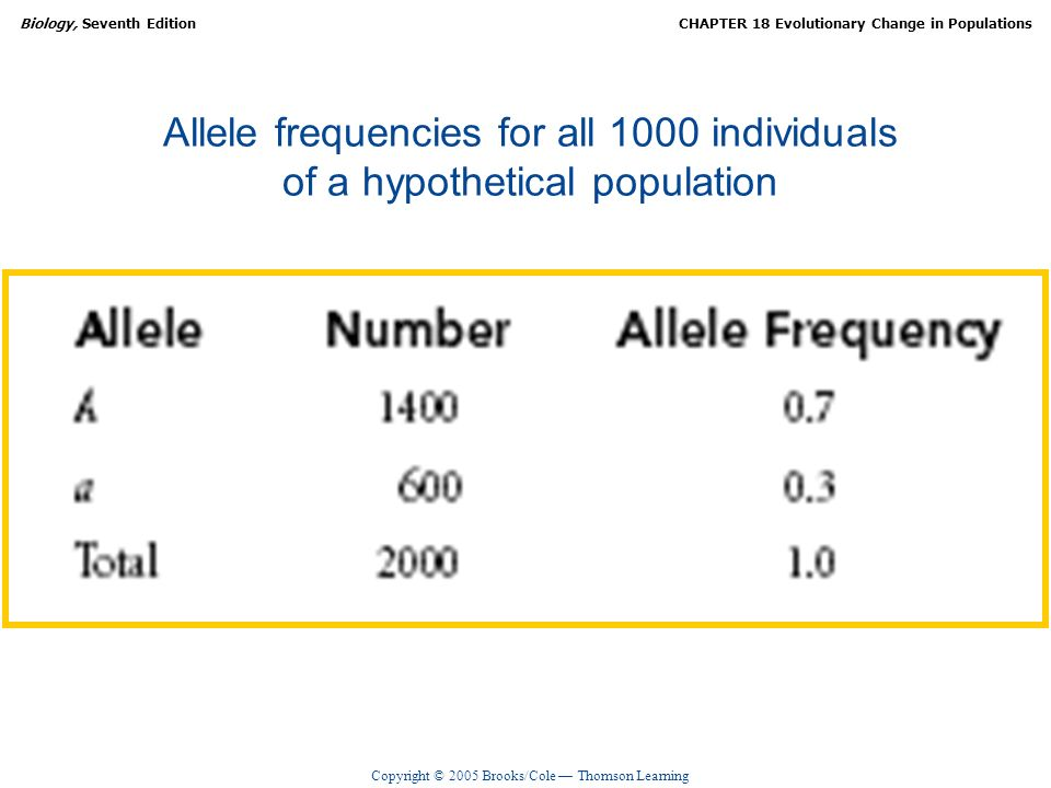 Allele frequencies for all 1000 individuals of a hypothetical population