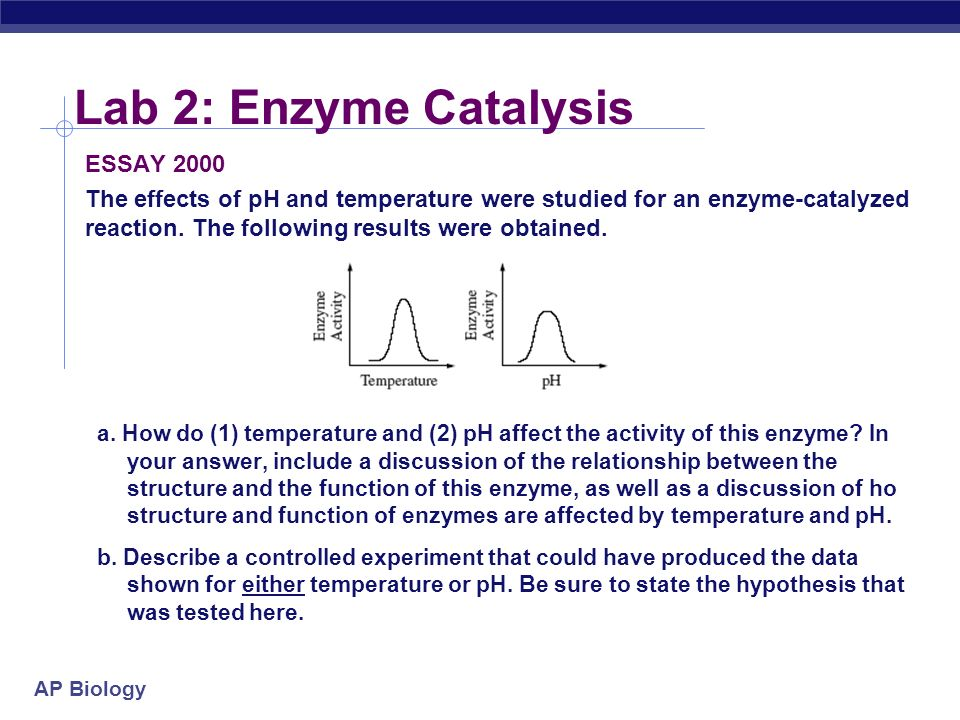 enzyme controlled reaction essay Enzymes questions for aqa as biology  how a decrease in temperature decreases the rate of an enzyme-controlled reaction  essay you should write.