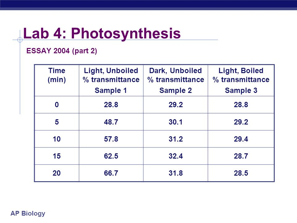 conclusion photosynthesis essay experiment to prove light is essential for photosynthesis with experiment  to prove light is essential for photosynthesis with