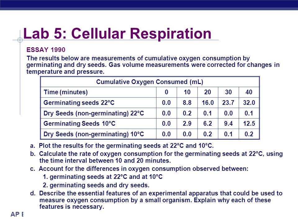cell respiration essay 1993