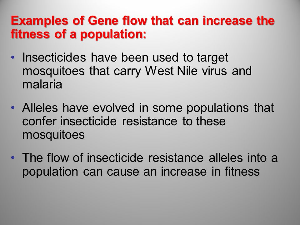 Examples of Gene flow that can increase the fitness of a population: