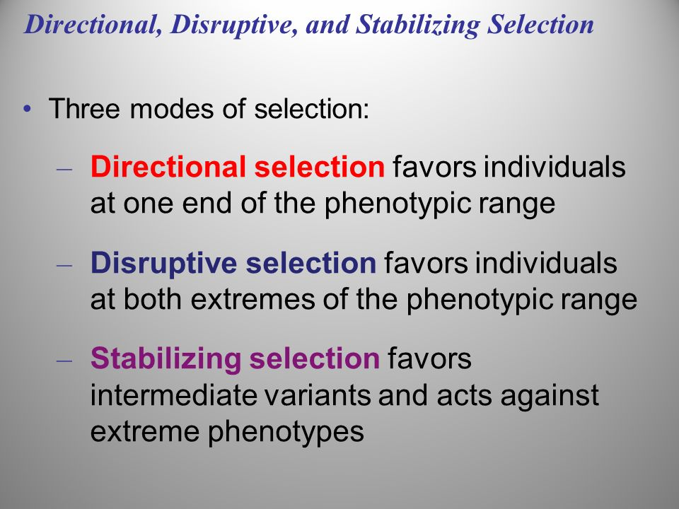 Directional, Disruptive, and Stabilizing Selection