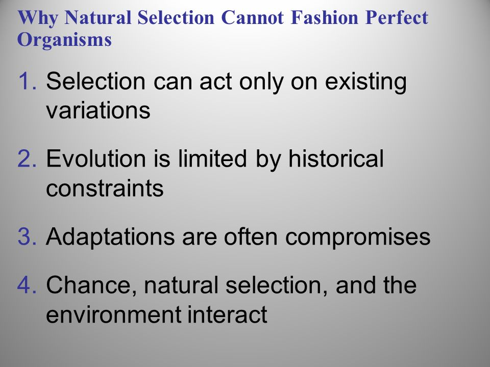 Why Natural Selection Cannot Fashion Perfect Organisms