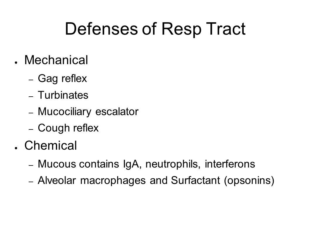 Defenses of Resp Tract Mechanical Chemical Gag reflex Turbinates
