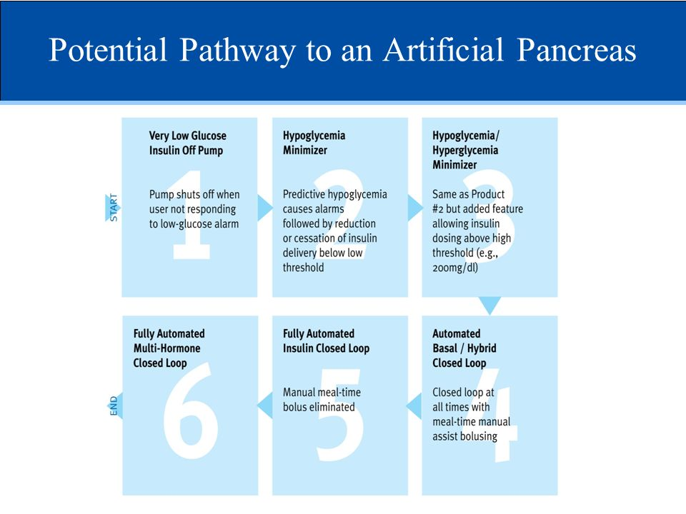 Potential Pathway to an Artificial Pancreas