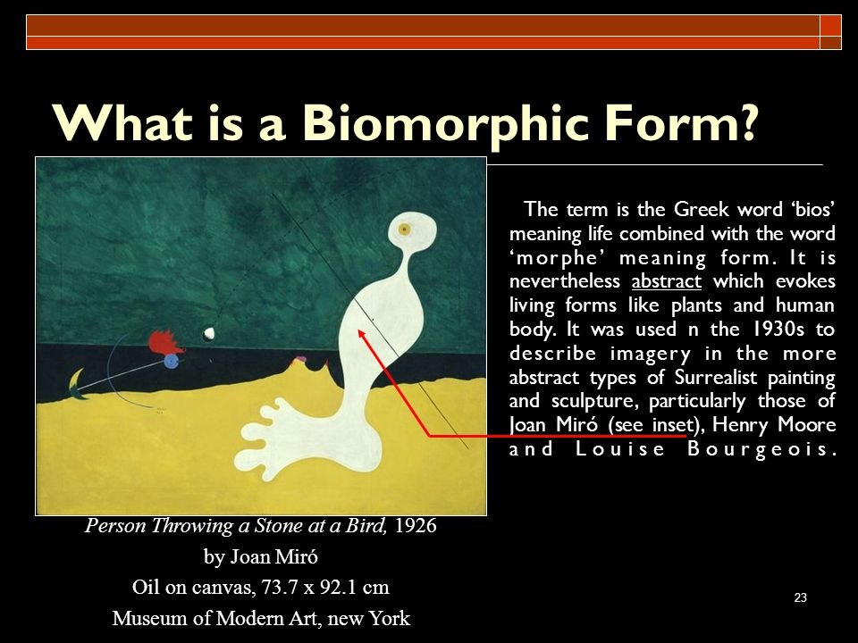 What is a Biomorphic Form