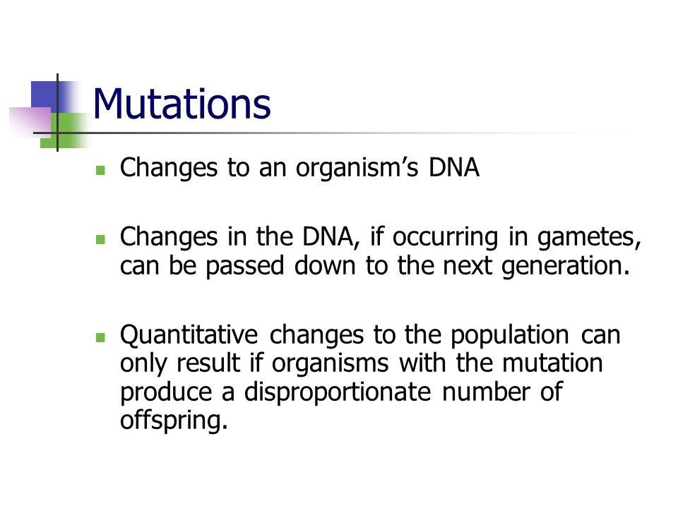 Mutations Changes to an organism's DNA