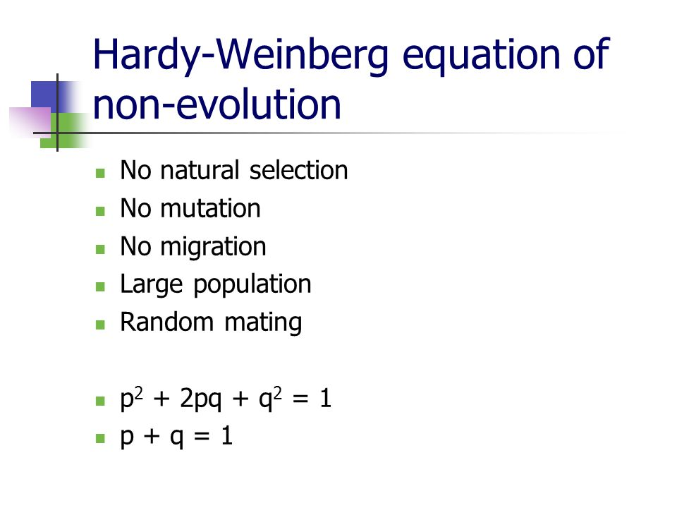 Hardy-Weinberg equation of non-evolution