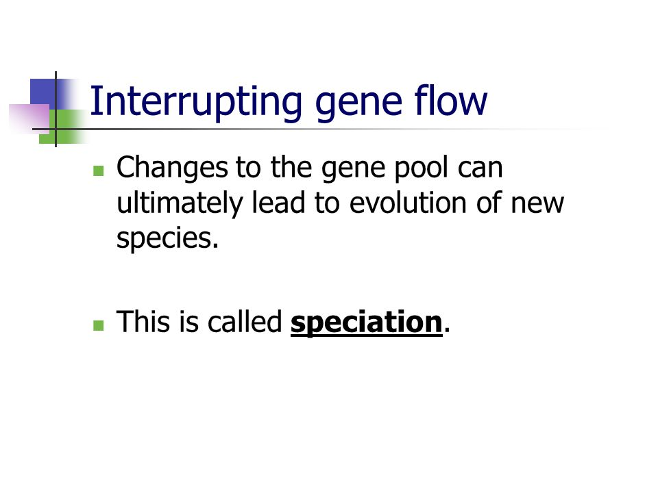 Interrupting gene flow