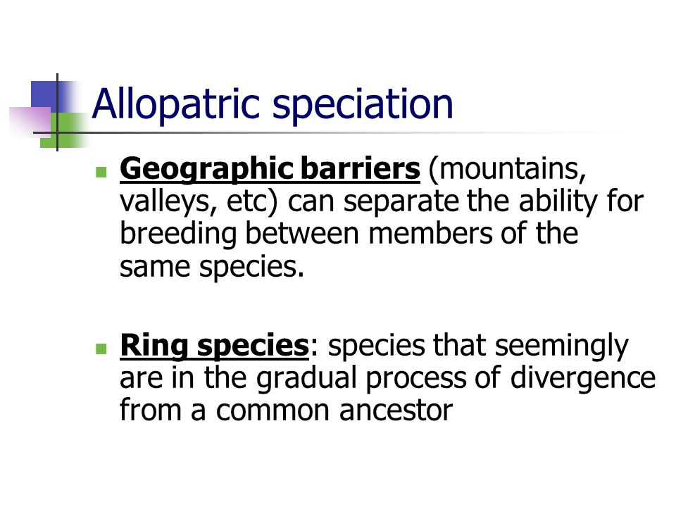 Allopatric speciation